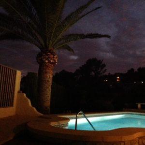 Zwembad En Palm 2